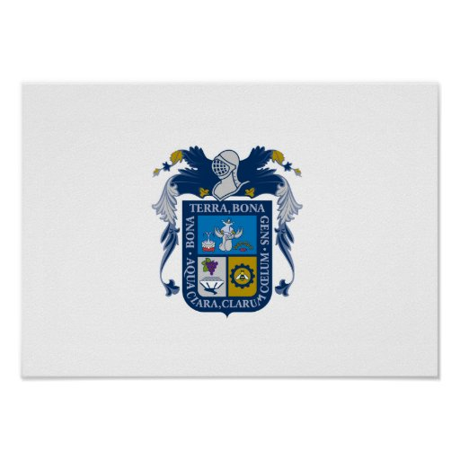 Flag of Aguascalientes Print