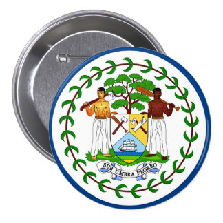 Flag of Belize Button