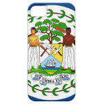 Flag of Belize iPhone 5 Covers