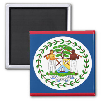 Flag of Belize Fridge Magnets