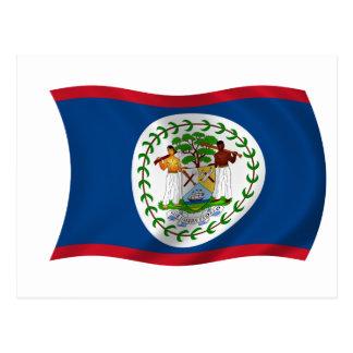 Flag of Belize Postcard
