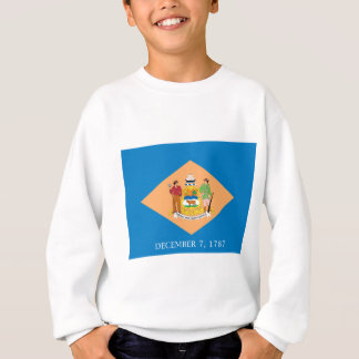 Flag Of Delaware Sweatshirt