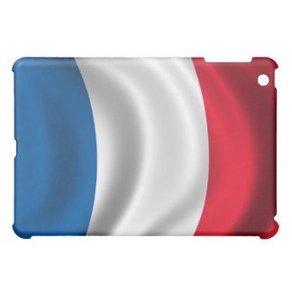 Flag of France for iPad Case For The iPad Mini