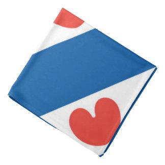 Flag of Friesland Bandana