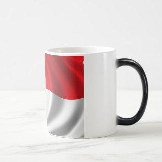 Flag of Indonesia Magic Mug