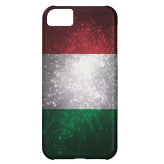 Flag of Italy iPhone 5C Cases