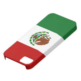 Flag of Mexico iPhone SE/5/5s Case