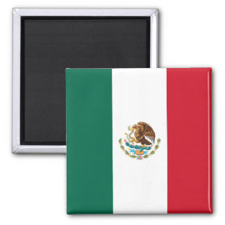 Flag of Mexico Magnets