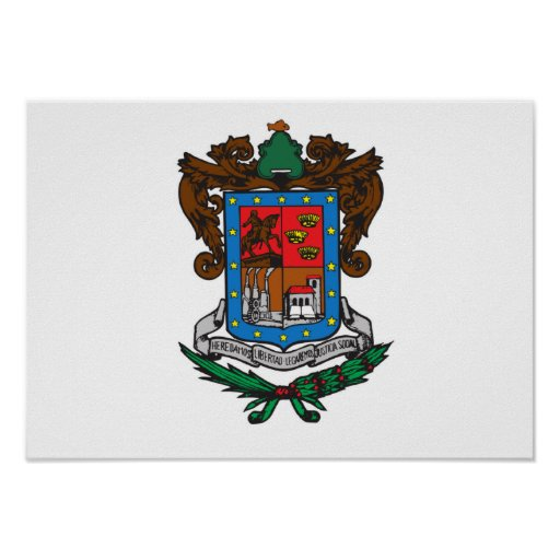 Flag of Michoacan Poster