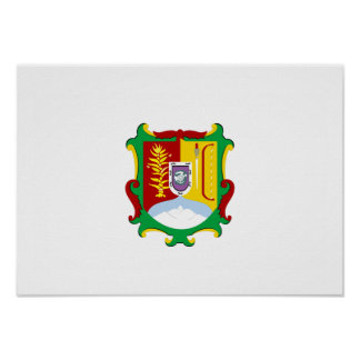 Flag of Nayarit Poster