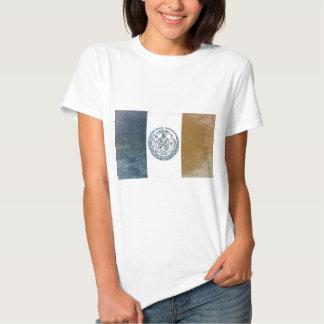 Flag of New York T Shirt