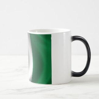 Flag of Nigeria Magic Mug