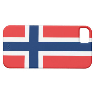 Flag of Norway iPhone SE/5/5s Case