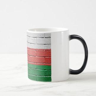 Flag of Oman Magic Mug