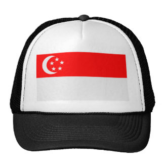 Flag of Singapore Mesh Hats