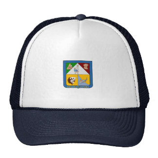 Flag of Sonora Mesh Hat