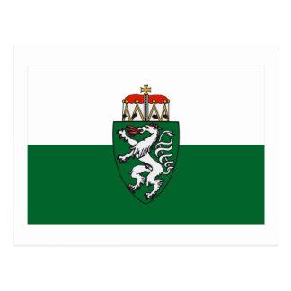 Flag of Styria, Austria Postcard
