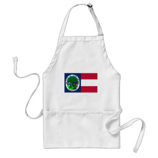 Flag of the Confederate State of Florida 1861 Adult Apron