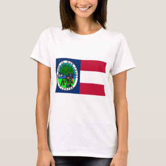 Flag of the Confederate State of Florida 1861 T-Shirt