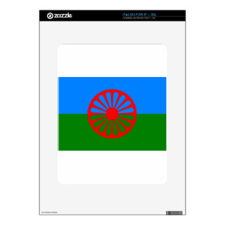 Flag of the Romani people - Romani flag iPad Skins