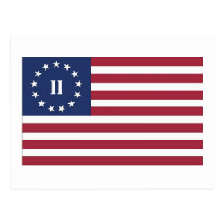 Flag  of the Second American Revolution Postcard