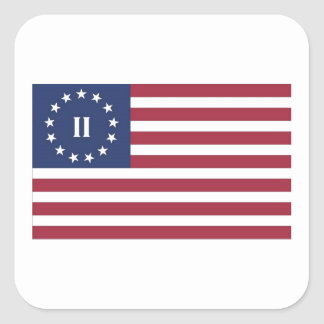 Flag  of the Second American Revolution Square Sticker