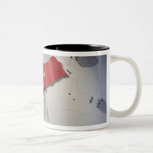 Flag of Turkey Two-Tone Coffee Mug