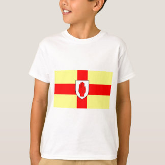 Flag of Ulster - Northern Ireland T-Shirt