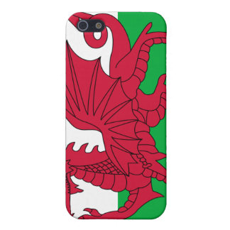 Flag of Wales Case For iPhone SE/5/5s