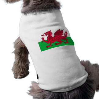 Flag of Wales - The Red Dragon - Baner Cymru T-Shirt