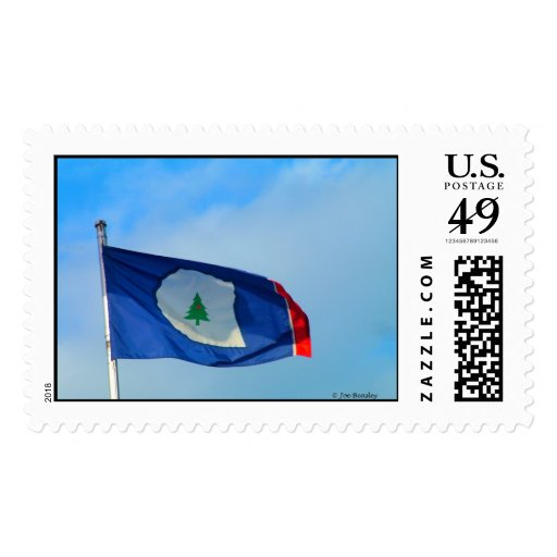 Flag of Warren County Tennessee Postage Stamp