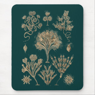 Flagellates Mouse Pad