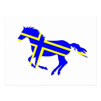 Flagged Horse Postcard