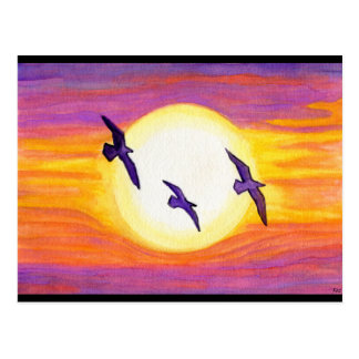 Flagler Beach Seagulls Postcard