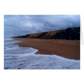 Flagler Beach Shoreline With Rocks Greeting Cards