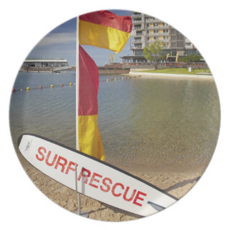 Flags and surf rescue board dinner plate