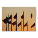 Flags at Sunset I American Patriotic USA Card