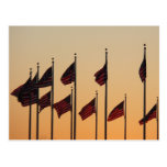Flags at Sunset I American Patriotic USA Postcard