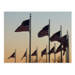 Flags at Sunset II Patriotic Photography Postcard