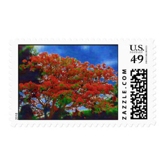 Flamboyan Stamps