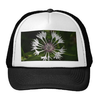 Flamboyant Flower Trucker Hat