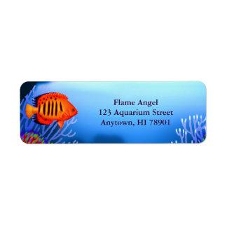 Flame Angelfish Reef Fish Label