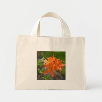 Flame Azalea Spring Shopping Tote Bag