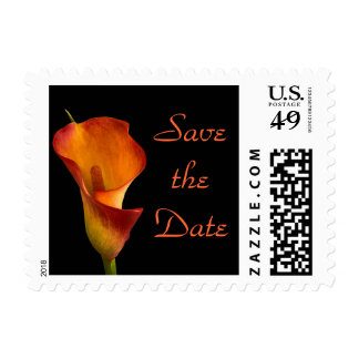 Flame Calla Lily Postage Stamp