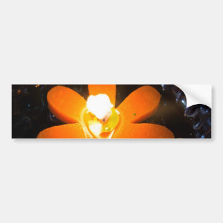 Flame from an orange floating candle car bumper sticker
