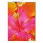 Flame Hibiscus I Greeting Card