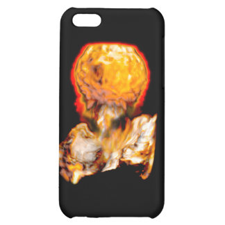 Flame iPhone 5C Cases