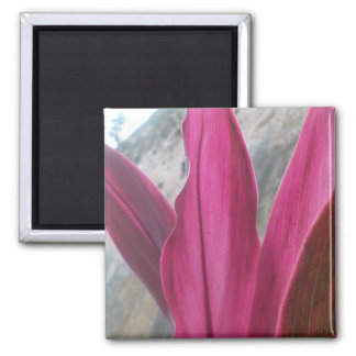 Flame leave 2 inch square magnet