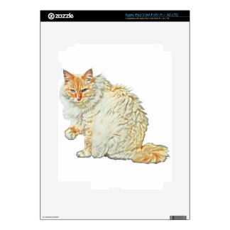 Flame point siamese cat 2 decal for iPad 3
