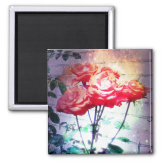 Flame Roses Magnet